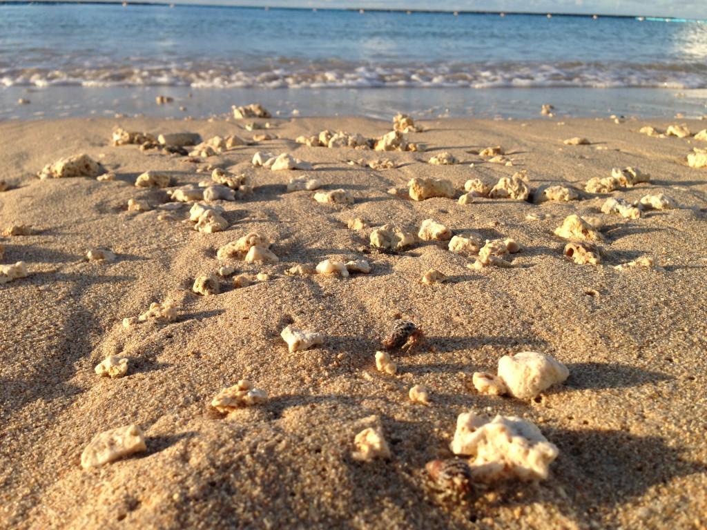 石垣島の砂浜